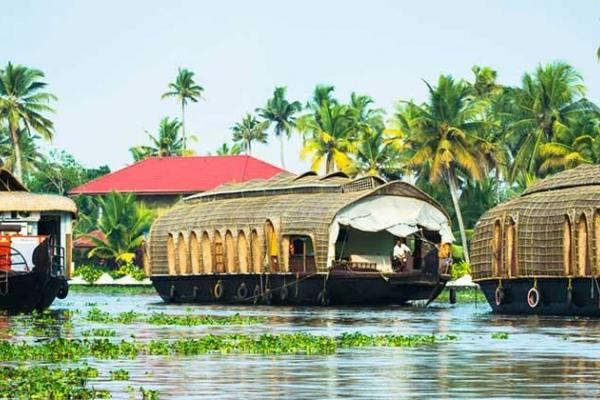 Bewildering Kerala Tour Package