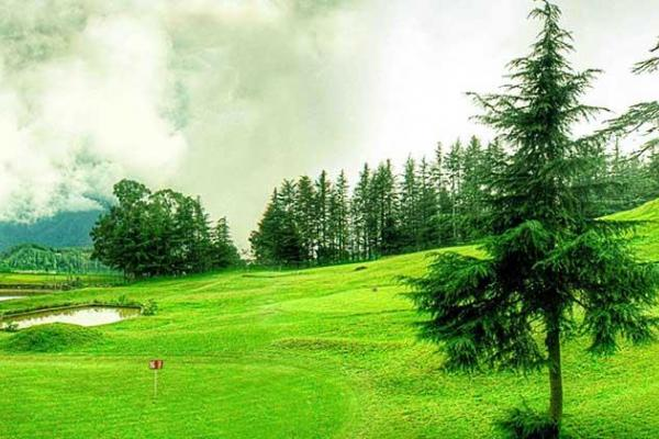 Explore Shimla with Naldehra