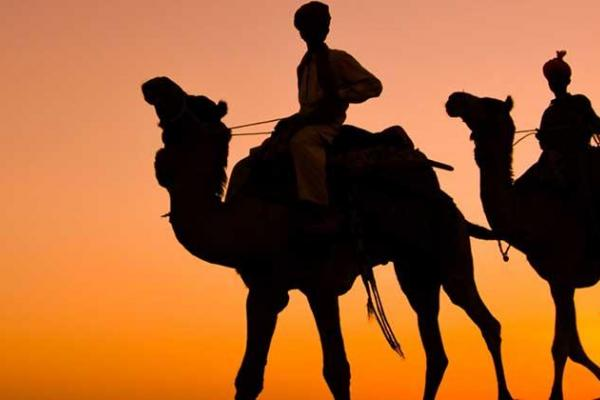 The Absolute Royal Rajasthan Tour